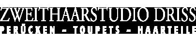 Logo von Zweithaarstudio Driss, Perücken für München